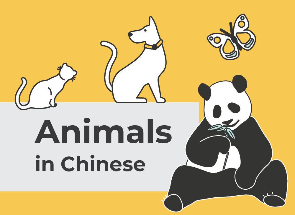 Animals in Chinese | Learn Chinese Vocabulary with NihaoCafe